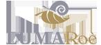 Allevamento e vendita Lumache, vasetti di chiocciole pronte a cuocere LUMARoè